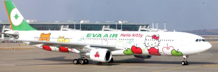 "Самолет авиакомпании ""Eva"""