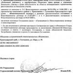 дополнительное соглашение к инвестиционному договору