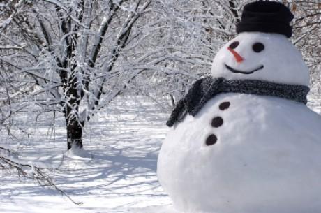 Снеговиков будет лепить машина