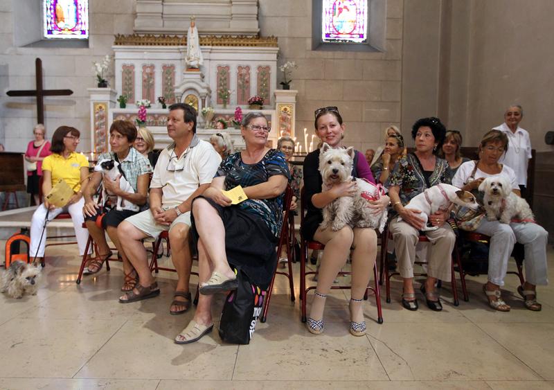 Домашние животные вместе со своими хозяевами на праздничной мессе в Церкви Сен-Пьер Д'Арен в Ницце