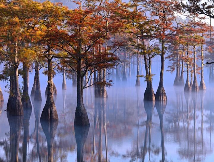 Природа, пейзаж - Alan M. Gardner