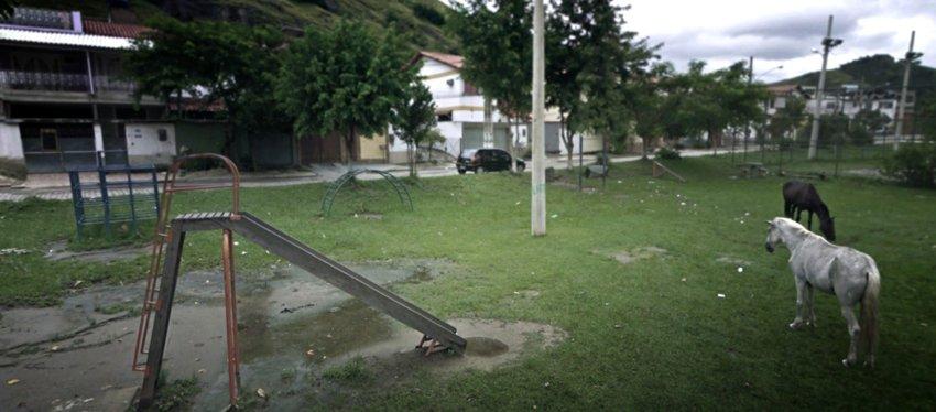 В Сан Паулу, Бразилия, проживает 20 млн. жителей, однако в это трудно поверить