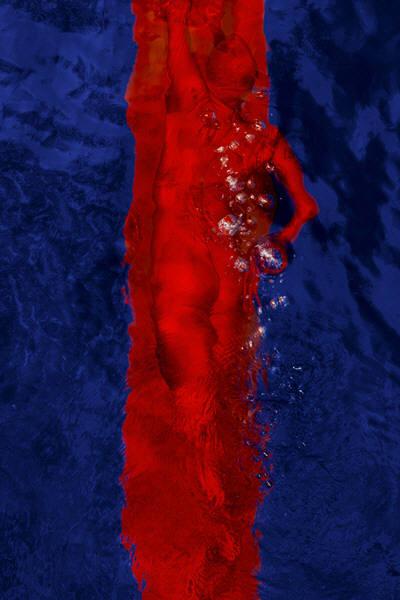 Подводные фотографии Barbara Cole