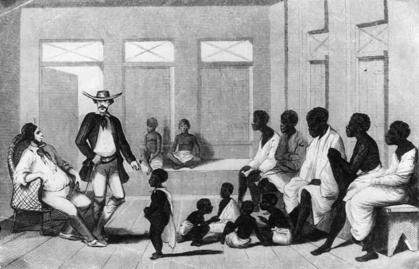 Рабов приравнивали к собакам и мулам