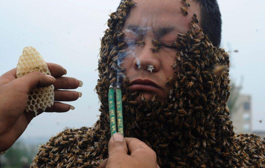 Помощник отгоняет пчел от лица ладаном