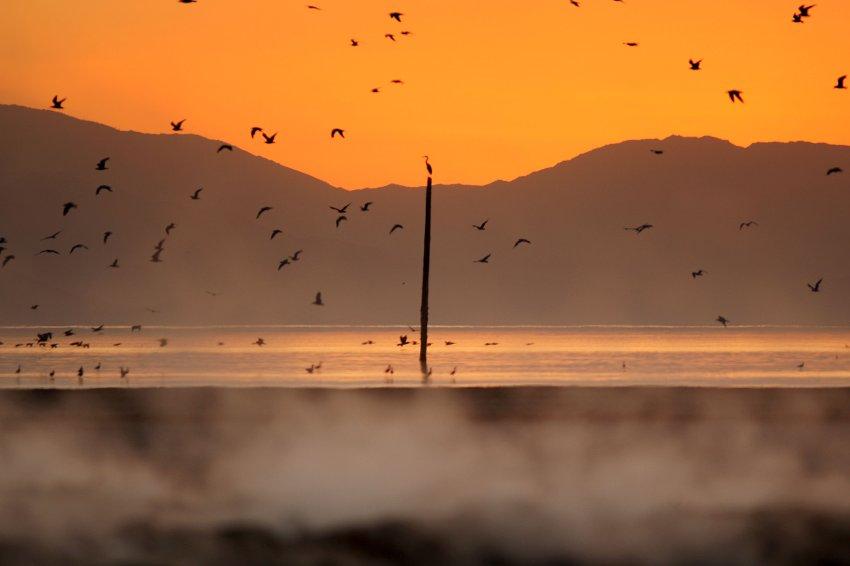 Озеро Солтон-Си