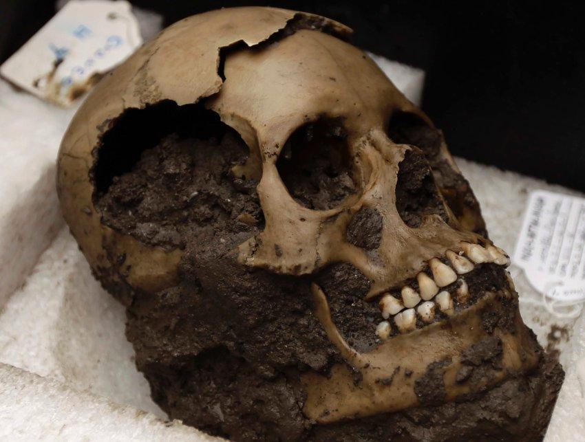 Один из 50 черепов, найденных в храме Темпло-Майор