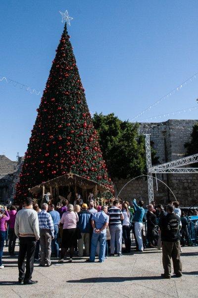 Небольшая группа туристов перед рождественской ёлкой
