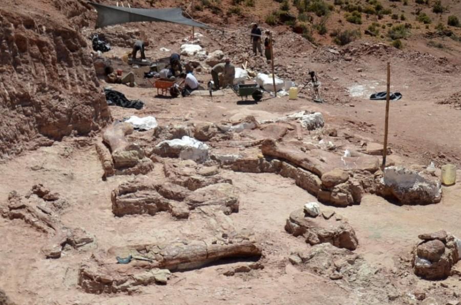 Раскопки в Аргентине