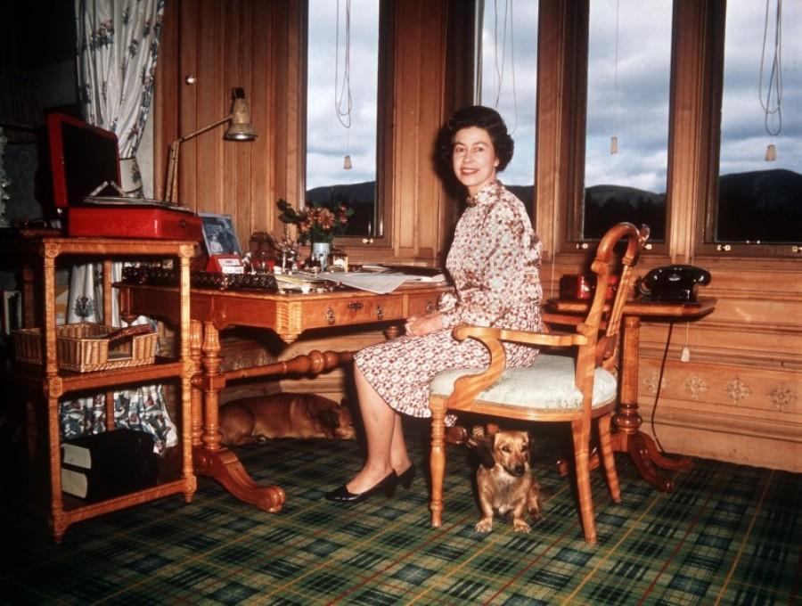 Королева Елизавета в своем кабинете